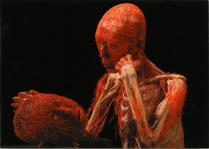 A postcard from the Body World Exhibit.